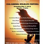 10th Annual Wildlife Festival Flyer
