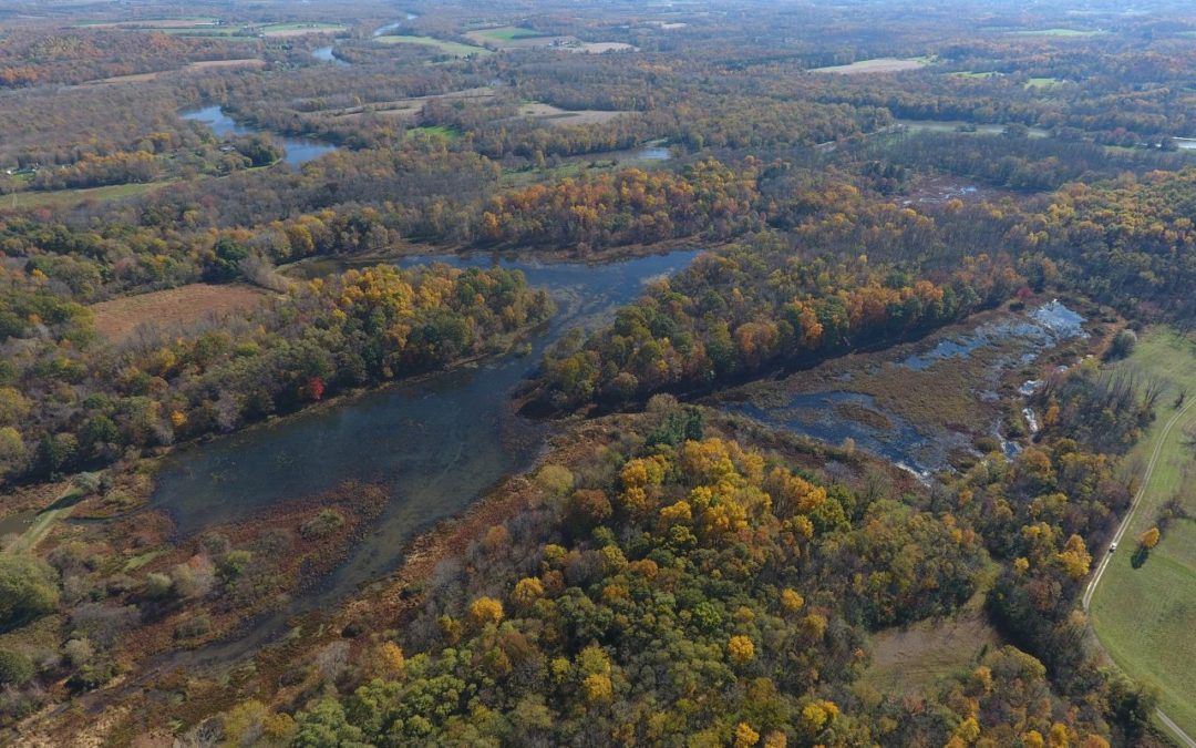 Aerial Images of Northern Montezuma WMA Marshes
